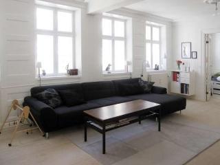 Fiolstræde - On The Pedestrian Street - 17 - Copenhagen vacation rentals