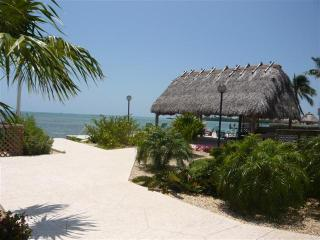 THE PALMS 417 - Islamorada vacation rentals