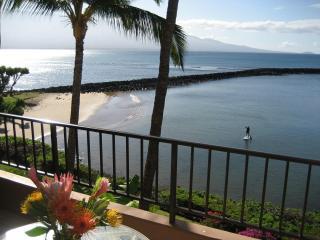 Maui Oceanfront, Romantic, Large Lanai, free Wi-fi - Maalaea vacation rentals