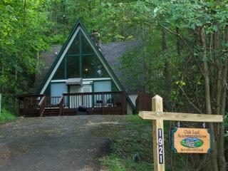 Smoky Bear Hideaway - Smoky Bear Hideaway - Gatlinburg - rentals