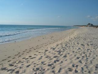 Turtle Hideaway - Privacy, Beautiful Beach - Playa del Secreto vacation rentals