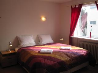 Centralapartment in the heart of Reykjavik - Reykjavik vacation rentals
