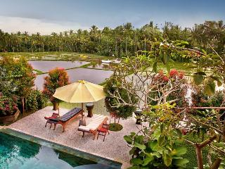 Villa Padi Menari - Beautiful villa in the lush ri - Ubud vacation rentals