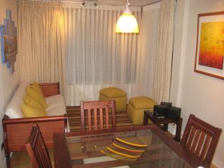 Great location 2/2 condo sleeps 5 in Viña del Mar - Isla Negra vacation rentals