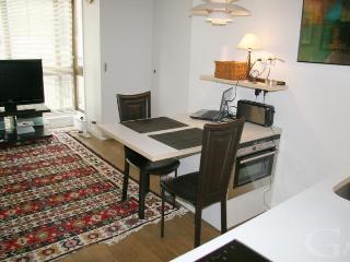 Beautiful 1 Bedrm Apartment in Heart of Paris! - Paris vacation rentals