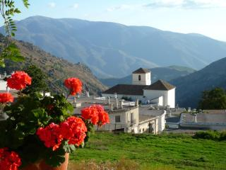 Apartment in Bubion, Las Alpujarras - Bubion vacation rentals
