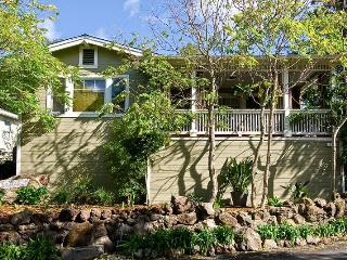 Trendy San Francisco Style Home in Sonoma - Petaluma vacation rentals