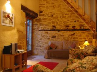 Sarlat, La Grange, barn conversion, pool, views - Sarlat-la-Canéda vacation rentals