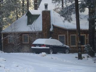 Snow Bungalow - Wrightwood vacation rentals