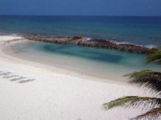 Private swimming/snorkeling cove fed by the Caribbean Sea - Truly Oceanfront luxury in Grand Cayman - Old Man Bay - rentals
