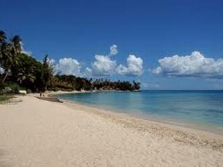 Barbados Cozy and Comfortable and a Great Price. - Speightstown vacation rentals