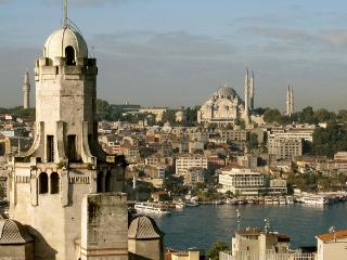 next to galata tower, views from shared terrace - Istanbul vacation rentals