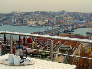spacious characterful, fabulous views from terrace - Istanbul vacation rentals
