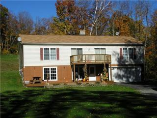 2200sf Country House on 16 Acres-2 Miles to Jiminy - Hancock vacation rentals