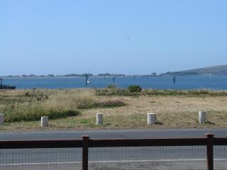 Harbor Cutie, Breathtaking Bay View, Charming Home - Bodega Bay vacation rentals