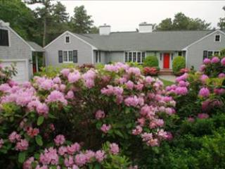 Front of House - Osterville Vacation Rental (96974) - Osterville - rentals