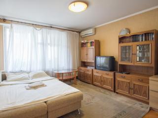 Shabolovskaya Apartment - Russia vacation rentals