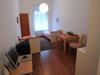 Studio apt.city center, FREE parking and WIFI - Zagreb vacation rentals