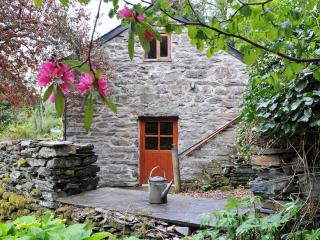 Coach House - Quaint Romantic Cottage in Snowdonia - Snowdonia National Park Area vacation rentals