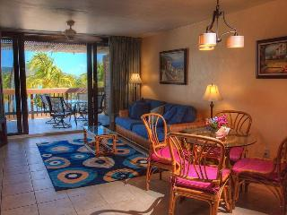 View of Paradise (Fully Renovated Condo) - Chocolate Hole vacation rentals