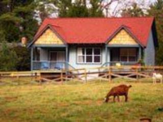 Property 94038 - Fabulous House in Flat Rock (Rosemary 94038) - Flat Rock - rentals