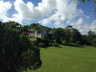 'Lansdowne'  haven for nature lovers and golfers. - Ocho Rios vacation rentals