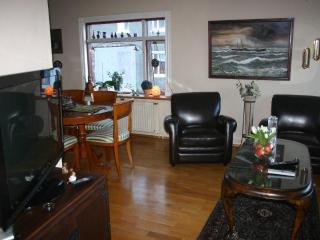 Reykjavik Centro Apartments (4 persons) - Akureyri vacation rentals