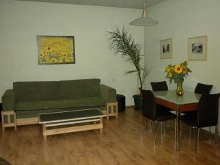 Ararat View Apartment - Yerevan vacation rentals