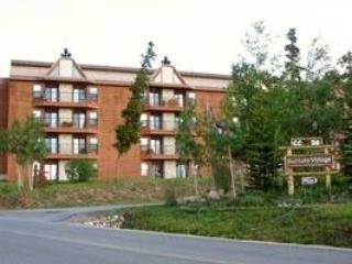 WILDERNEST, 2 BDRM CONDO  (202AA) - Silverthorne vacation rentals