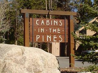 COZY KEYSTONE, 3 BDRM, CABIN IN THE PINES TWN HM - Keystone vacation rentals