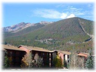 NEIGHBORLY 1 BDRM, MOUNTAIN SIDE CONDO (MS222) - Frisco vacation rentals