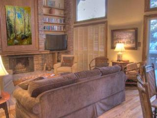 All Seasons C1 2BD,2BA condo - Vail vacation rentals