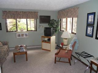 Ogunquit Condo! [  sorry full] - Ogunquit vacation rentals