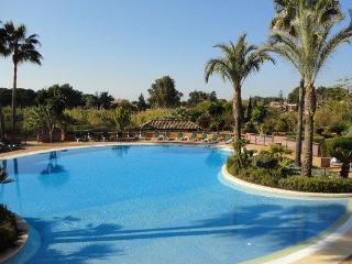 Free Broadband WiFi, Fabulous sea views, 5 Pools - Playa del Carmen vacation rentals