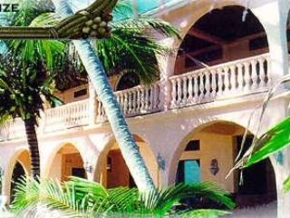 BELIZE - CASA TORTUGA VILLA - San Pedro vacation rentals