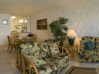 Charming Condo with 2 Bedroom/2 Bathroom in Maalaea (KANAI A NALU #103) - Image 1 - Maalaea - rentals