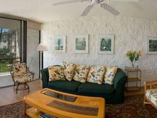 Gorgeous 2 BR-2 BA House in Maalaea (KANAI A NALU #210) - Maalaea vacation rentals