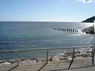 B2 Waterfoot Seafront Apt  Newcastle - Newcastle vacation rentals