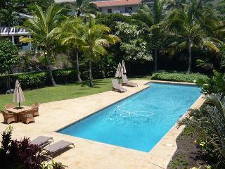 Aloha! Welcome to Kahle Ohana, our brand new Keauhou vacation home.-PHKahle - Holualoa vacation rentals