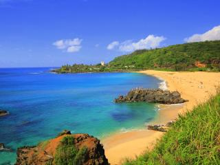 North Shore Oahu Tropical 2 Bedroom Beach House - Haleiwa vacation rentals