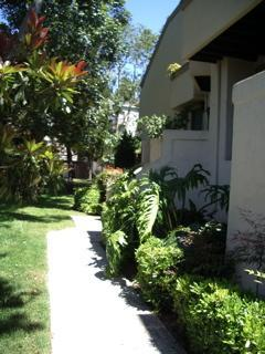 welcome!! - Close to UCSD/HOSPITALS/MILITARY BASES - La Jolla - rentals