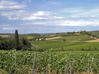 Two Chianti Farmhouses for Large Group on a Wine Estate - Casa del Grano and Fieno - Barberino Val d'Elsa vacation rentals