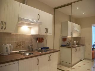 Gorohovaya ul. 33(studio B) - Adelson's House - Saint Petersburg vacation rentals