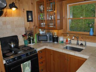 Private Lake Front Cottage with dock, Kayak, canoe - Red Hook vacation rentals