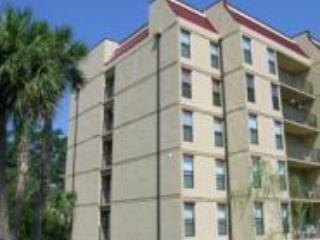 Beautiful 4 story buildings (Elevator service) - Luxurious Villa -Best Rates! Great Loc - Hilton Head - rentals