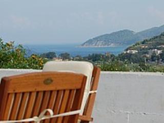 Casa Costabile - Image 1 - San Marco di Castellabate - rentals