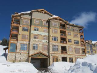 Heavenly Condo in Big White (#4-202-7700 Porcupine Rd,Bld 4 ASPEN202) - Big White vacation rentals