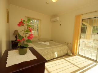 Kingston Jamaica modern city 2 bed apt, HDTV WIFI - Kingston vacation rentals
