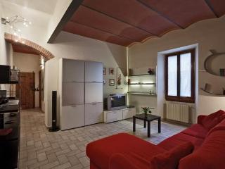 Charming 1 Bedroom Apartment in Center of Florence - Florence vacation rentals