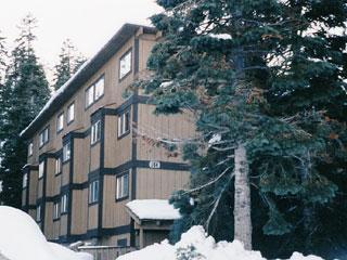 Wonderful House in Lake Tahoe (033) - Image 1 - Lake Tahoe - rentals